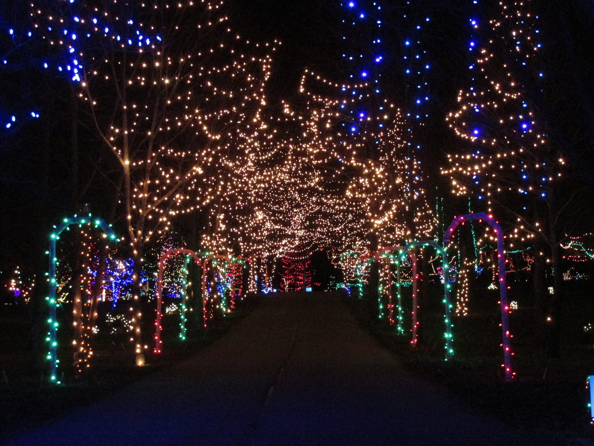 Christmas Light Displays In Michigan