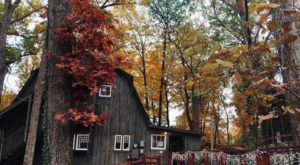 Explore An Intriguing Piece Of Kentucky History At This Hidden Gem In The Woods