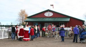 This Reindeer Farm In Michigan Will Positively Enchant You This Season