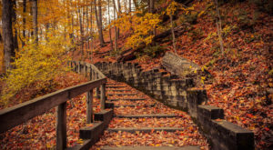 9 Trails In Cleveland You Must Take If You Love The Outdoors