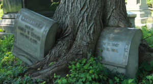 9 Staggering Photos Of An Abandoned Cemetery Hiding In Philadelphia