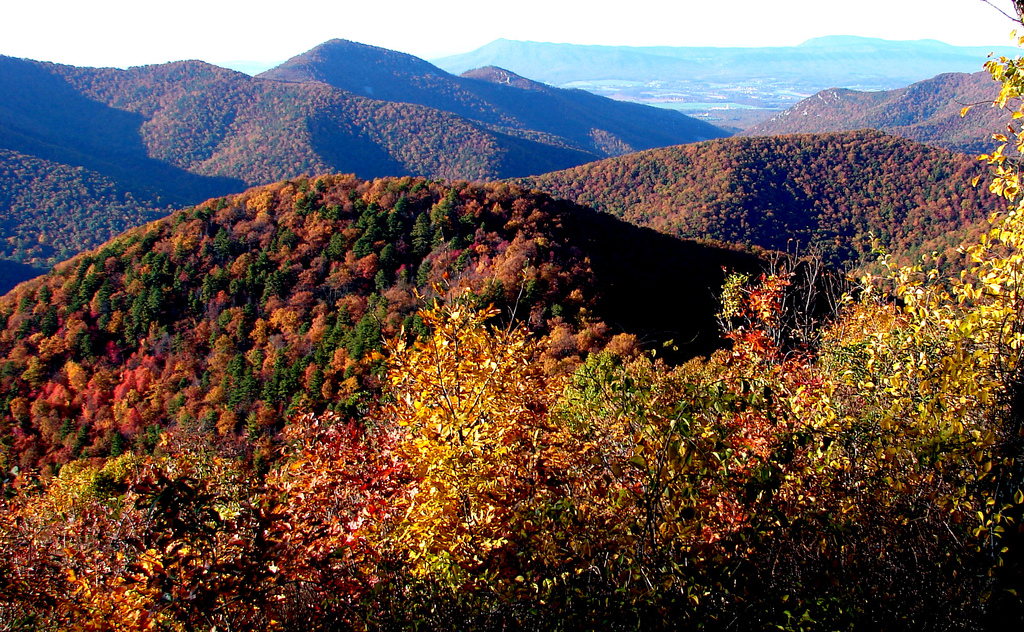8 Places To Visit In Virginia When The Mountains Are