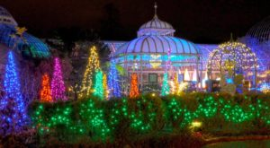 8 Magical Light Displays In Pittsburgh That Will Simply Mesmerize You This Season