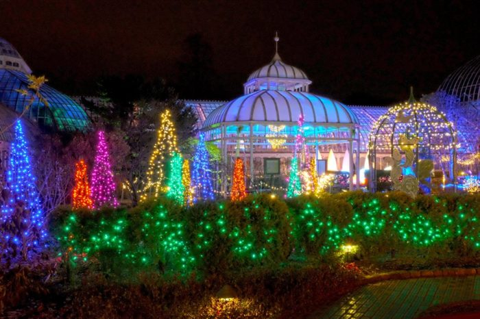 phipps conservatory and botanical gardens annual winter flower show and light garden already underway celebrates the theme holiday magic in 2017