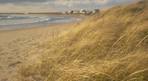 These 7 Rhode Island Beaches Are Gorgeous All Year Round