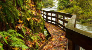 10 Legitimately Fun Things You Can Do In Oregon Without Spending A Dime