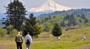 11 Of The Greatest Hiking Trails On Earth Are Right Here In Portland