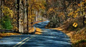 11 Picture Perfect Fall Day Trips To Take Around Philadelphia