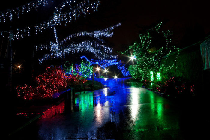 The Magical Ohio Garden That Comes Alive With Light Each