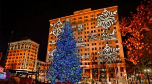 The Epic Portland Tree Lighting Ceremony That Will Dazzle And Delight You