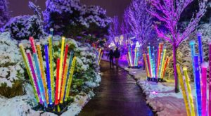 It's Not Christmas In Pittsburgh Until You Visit This One Magical Light Garden