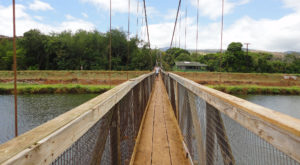 The Stomach-Dropping Suspended Bridge Walk You Can Only Find In Hawaii