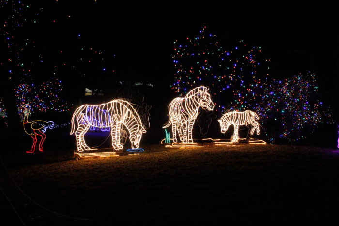 Best Holiday Light Displays In Denver 2017