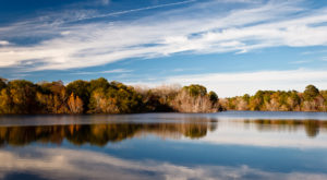 8 Under-Appreciated State Parks Near Austin You're Sure To Love