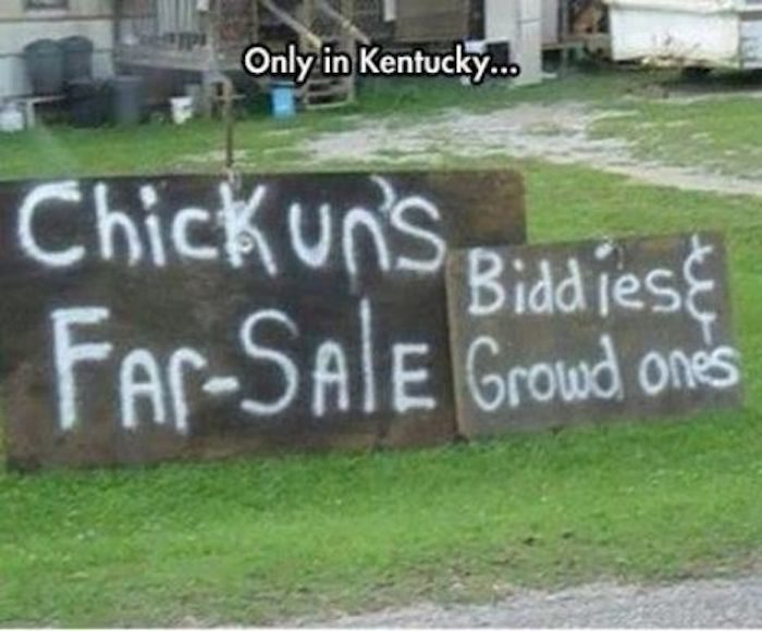 10 Downright Funny Memes About Kentucky