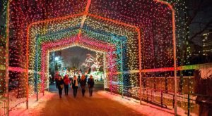 The Winter Walk In Chicago That Will Positively Enchant You