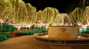 The Mesmerizing Christmas Display In Florida With Over 2 Million Glittering Lights
