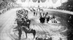 These 13 Rare Photos Show Dallas – Fort Worth Area's Cattle Drive History Like Never Before