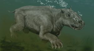 A Sea Creature From Millions Of Years Ago Was Found In Alaska