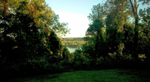 This One Easy Hike In Cincinnati Will Lead You Someplace Unforgettable