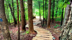 Virginia's Magical Staircase Trail Through The Forest Will Enchant You In The Best Way