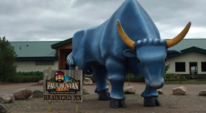 This Rare Footage Of A Minnesota Amusement Park Will Have You Longing For The Good Old Days