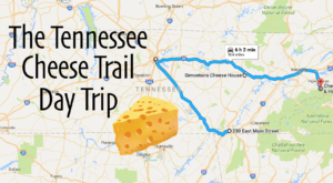 Take This Cheese Trail Through Tennessee For The Most Delicious Day Trip Ever