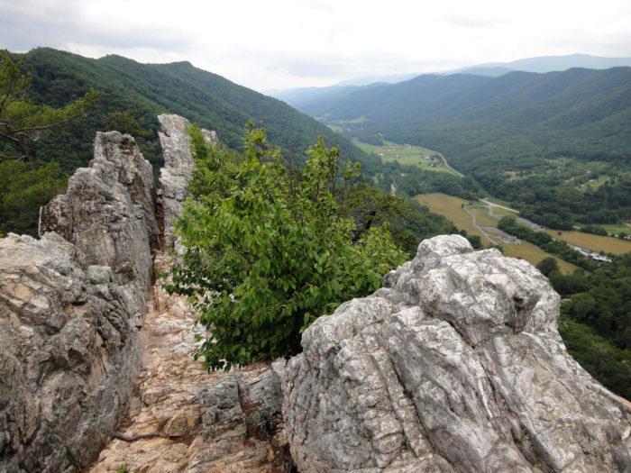 7 Best Hiking Trails In West Virginia