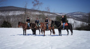 The Winter Horseback Riding Trail In Arkansas That's Pure Magic