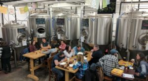 Tour These 5 Rhode Island Breweries for An Inside Look At The Ocean State Beer Scene