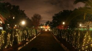The Winter Walk In New Orleans That Will Positively Enchant You