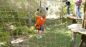 There's An Adventure Park Hiding Near Indianapolis And You Need To Visit