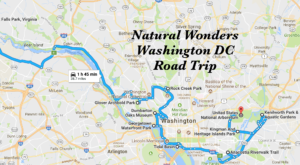 This Natural Wonders Road Trip Will Show You DC Like You've Never Seen It Before