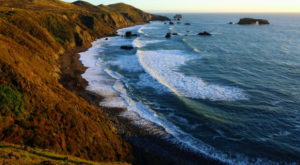 8 Silly Sayings That Will Only Make Sense If You're From Northern California