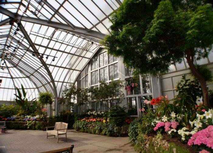 Indoor Botanical Gardens Near Me Brooklyn Botanical Garden Year Round Indoor Outdoor Exhibits
