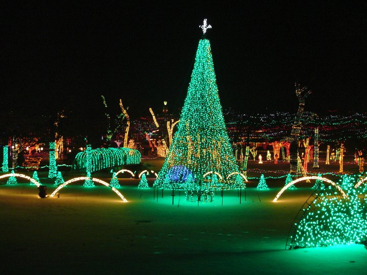 Rhema Christmas Lights The Mesmerizing Christmas Display