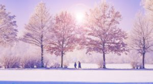 11 Things No One Tells You About Surviving A Massachusetts Winter