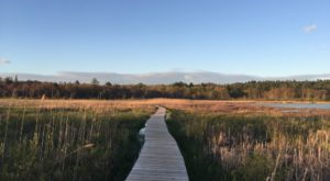 This Little Known Connecticut Conservation Center Is A Hidden Gem You'll Want To Explore