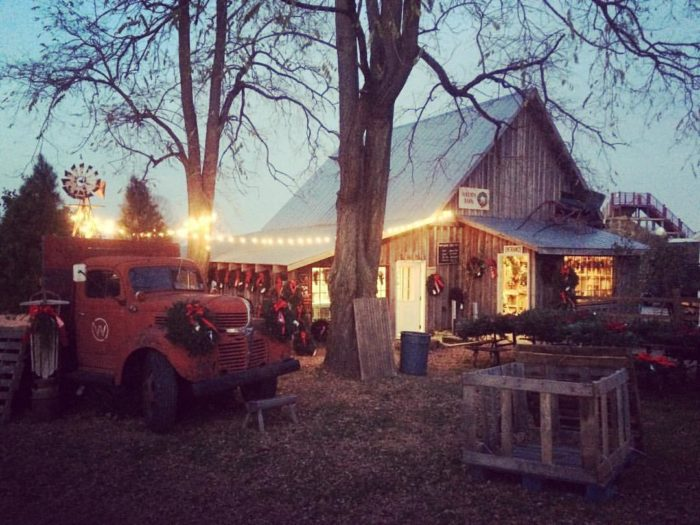 Dull's Tree Farm Is The Best Place To Get Your Christmas