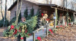 If You Love Decorating For Christmas You Must Check Out This Amazing Hidden Christmas Cabin in Missouri
