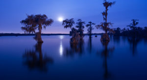 You'll Never Forget A Hike To One Of The Most Incredibly Scenic Places In Louisiana