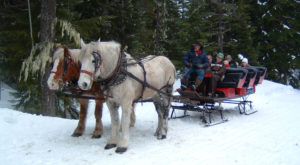 The Unforgettable Sleigh Ride Near Portland That Will Fill You With Holiday Magic