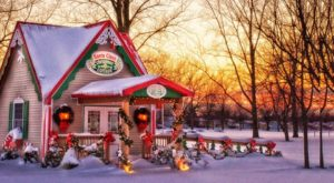 A Trip To This Magical Christmas Cottage Near Buffalo Will Make You Feel Like A Kid Again