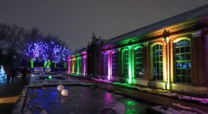 The Winter Walk In St. Louis That Will Positively Enchant You