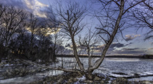 9 Things No One Tells You About Surviving A Virginia Winter