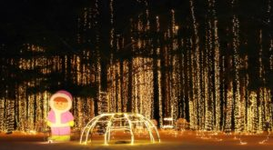 The Mesmerizing Christmas Display In Wisconsin With Over 1.5 Million Glittering Lights