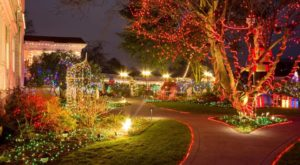 The Mesmerizing Christmas Display In Portland With Over 1 Million Glittering Lights