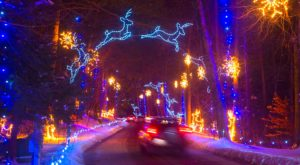 The Mesmerizing Christmas Display In Massachusetts With Over 650,000 Glittering Lights