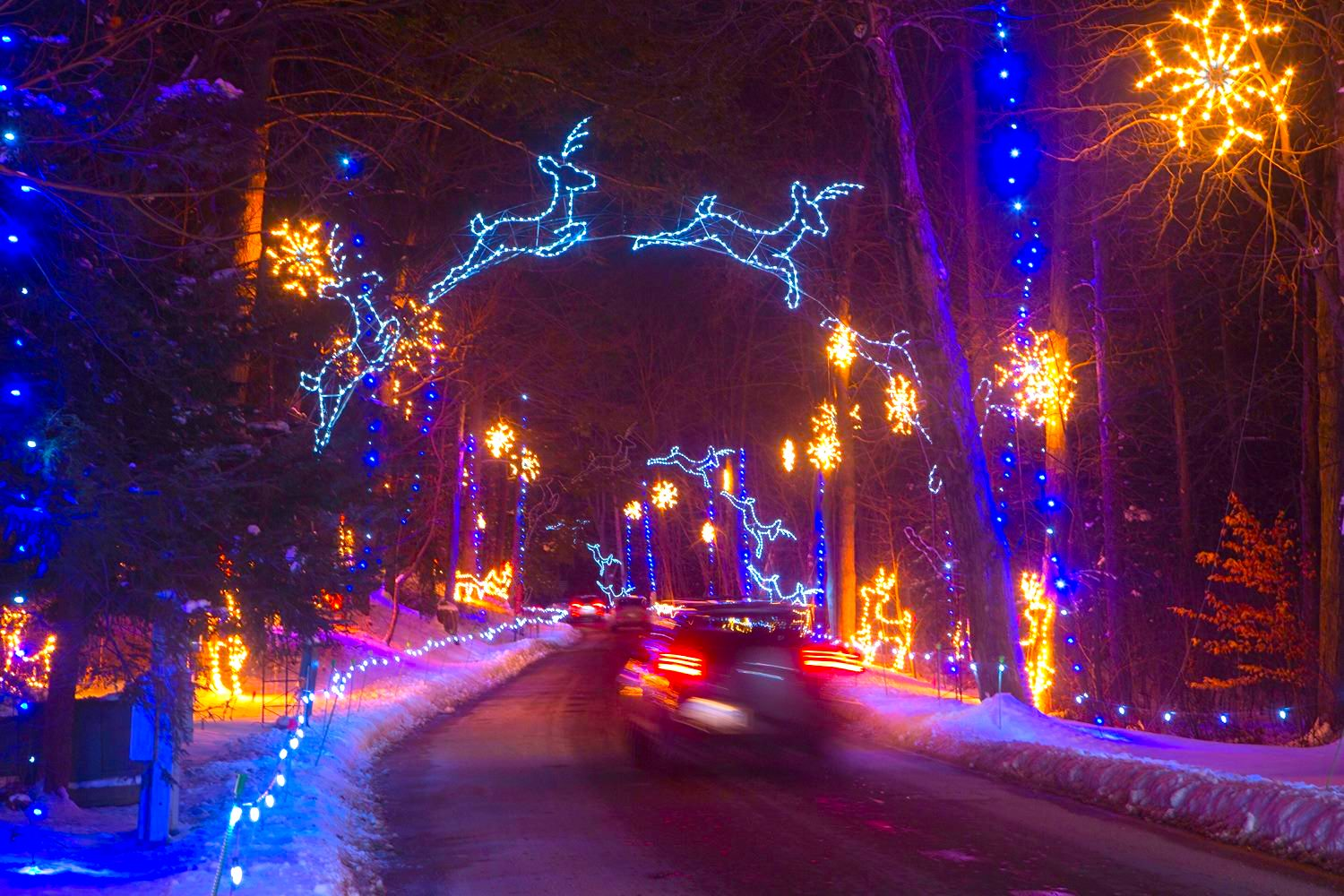 The Mesmerizing Christmas Display In Massachusetts With