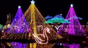 The Mesmerizing Christmas Display In Washington With Over 1 Million Glittering Lights